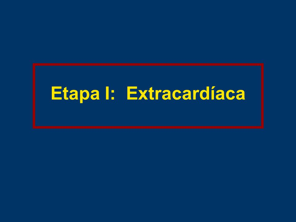 Etapa I: Extracardíaca