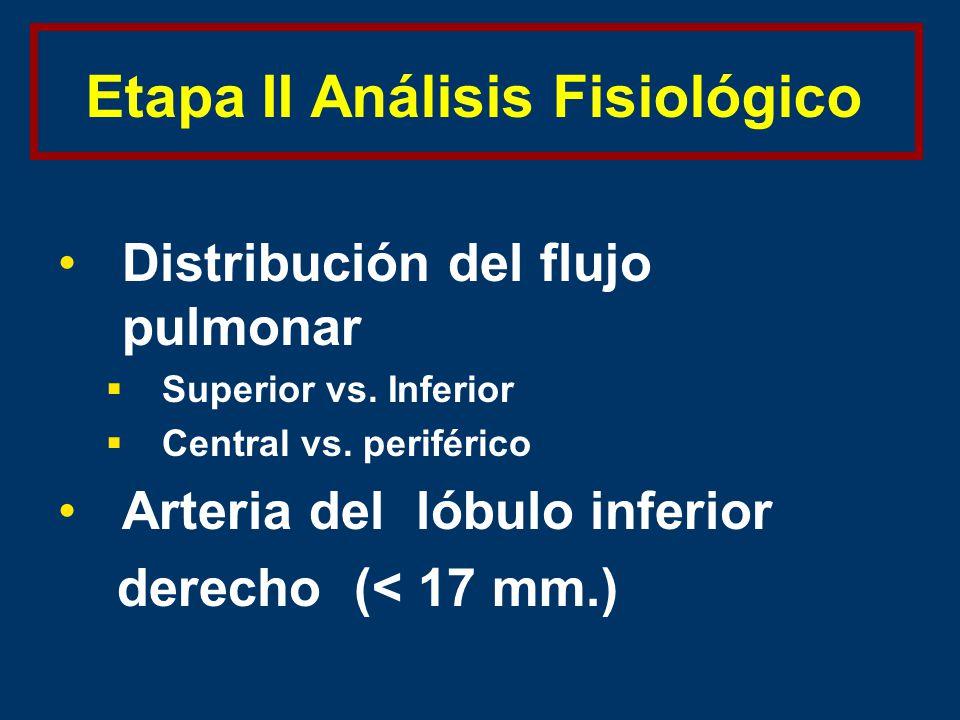 Etapa II Análisis Fisiológico Distribución del flujo pulmonar Superior vs.