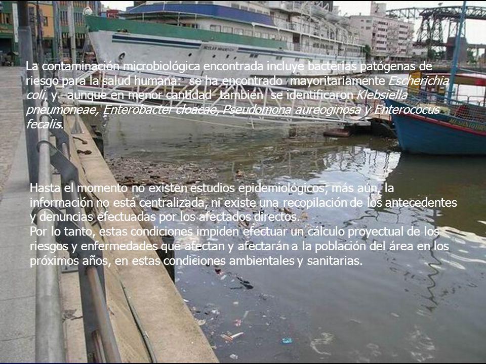 La contaminación microbiológica encontrada incluye bacterias patógenas de riesgo para la salud humana: se ha encontrado mayoritariamente Escherichia c