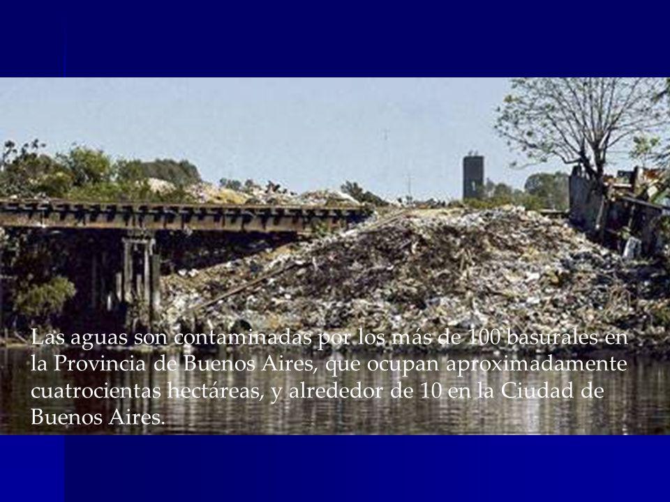 Las aguas son contaminadas por los más de 100 basurales en la Provincia de Buenos Aires, que ocupan aproximadamente cuatrocientas hectáreas, y alrededor de 10 en la Ciudad de Buenos Aires.