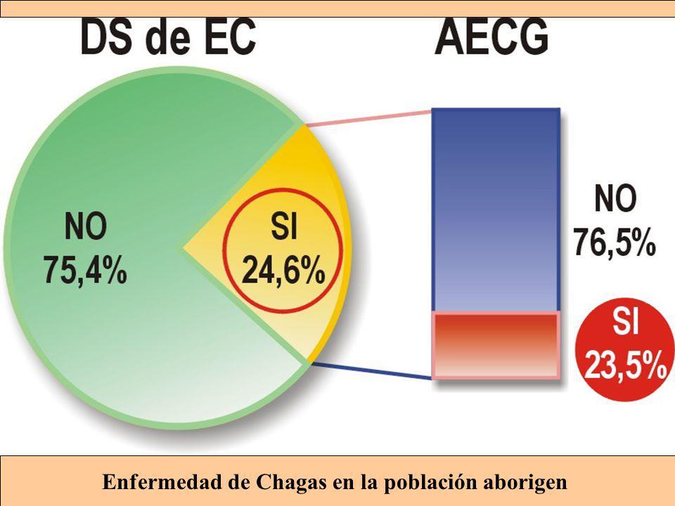 Enfermedad de Chagas en la población aborigen