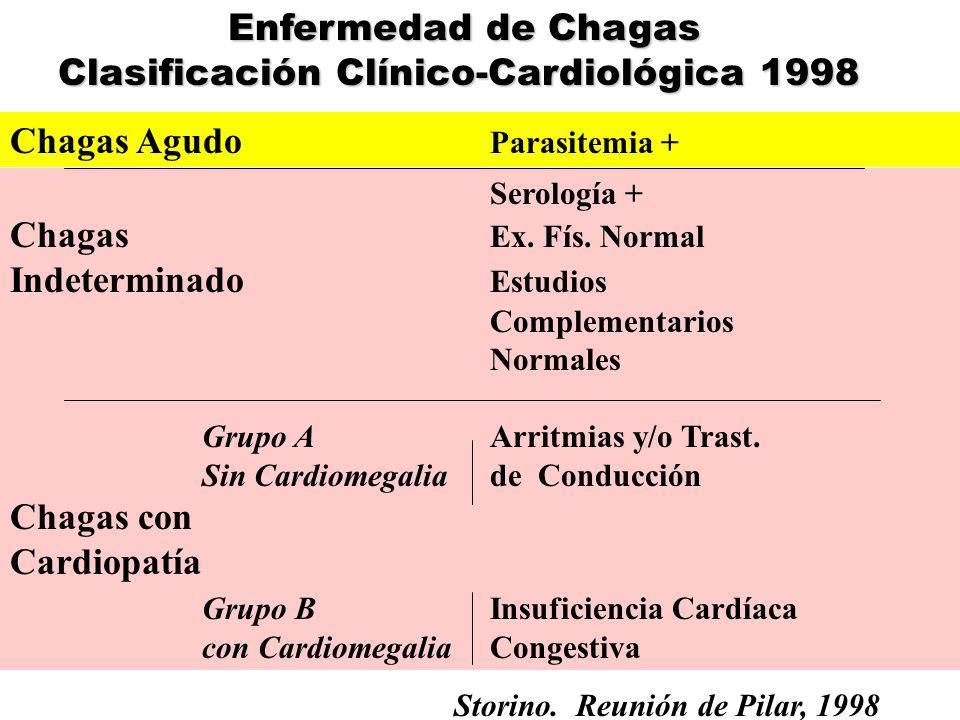 Fuente: Programa Nacional de Chagas 2003 Infestación Intradomiciliaria Casos Agudos Año 2004 INFESTACION Y CASOS AGUDOS POR TRANSMISION VECTORIAL EN ARGENTINA