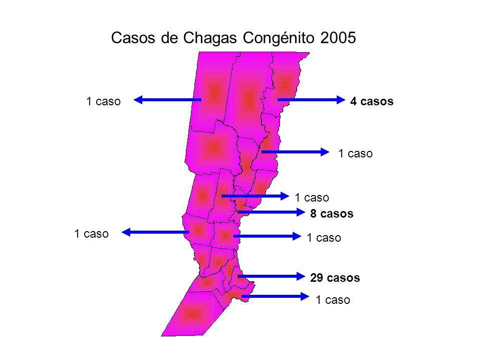 4 casos 8 casos 1 caso Casos de Chagas Congénito 2005 1 caso 29 casos
