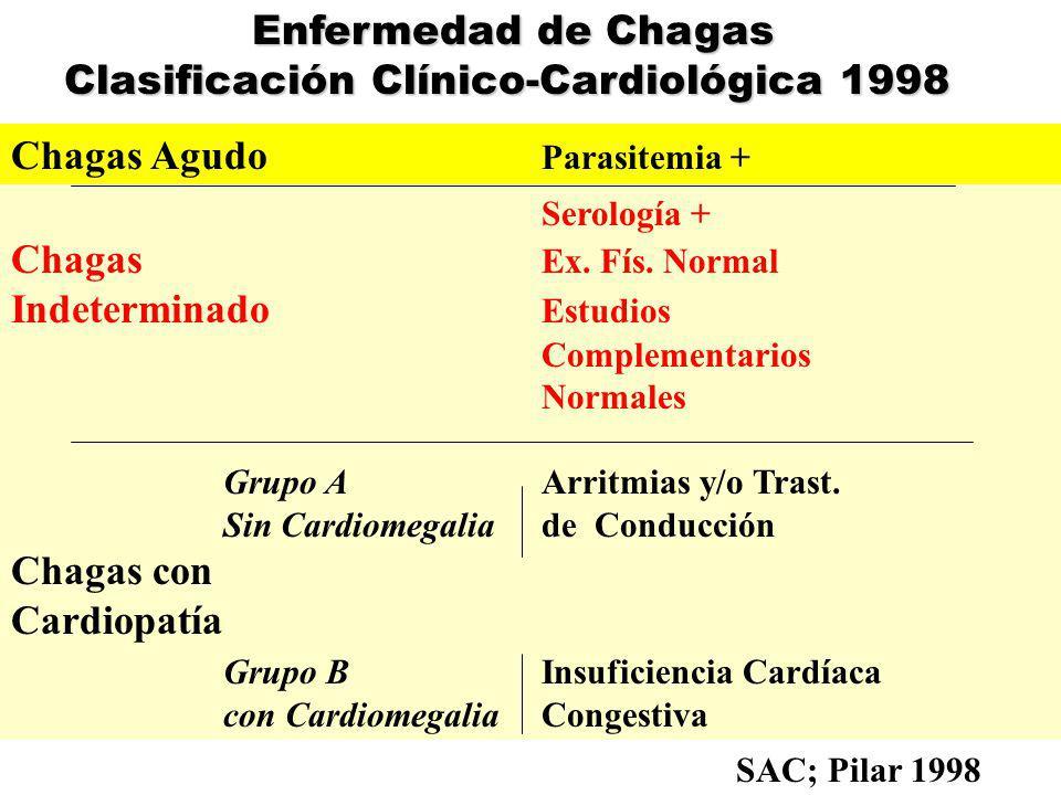 Historia Natural de la E.