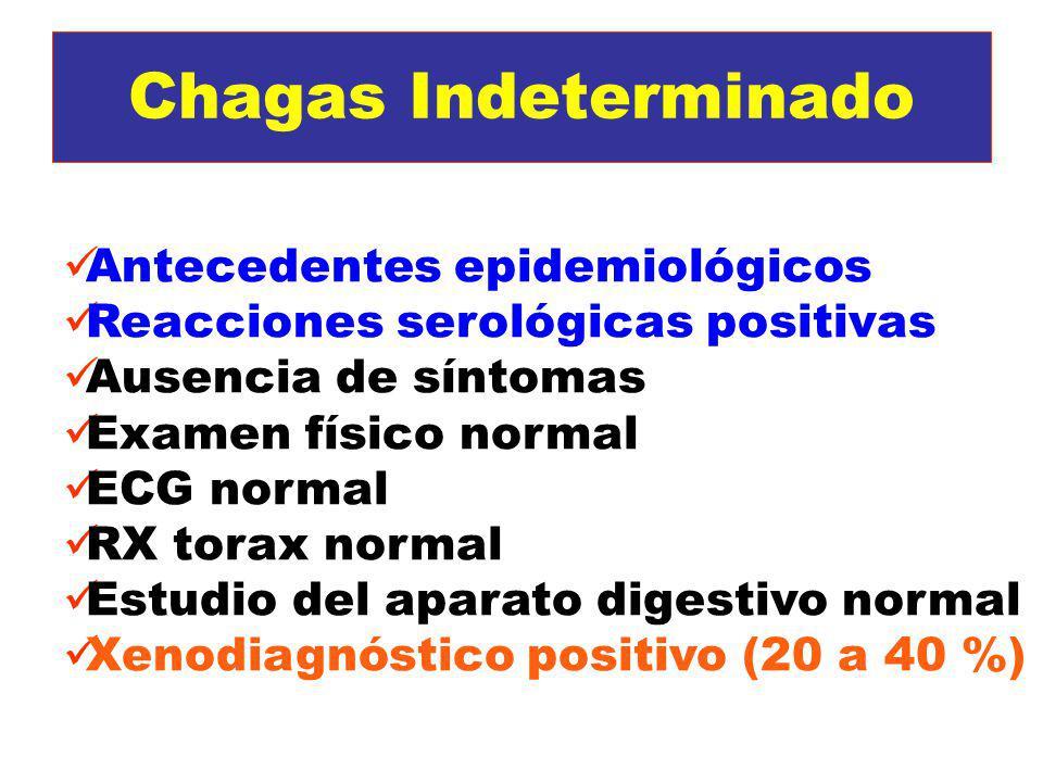 Chagas Indeterminado Antecedentes epidemiológicos Reacciones serológicas positivas Ausencia de síntomas Examen físico normal ECG normal RX torax norma