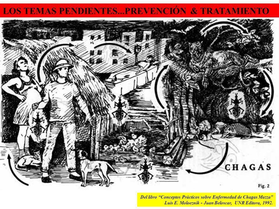 Del libro Conceptos Pràcticos sobre Enfermedad de Chagas Mazza Luis E. Moloeznik - Juan Beloscar, UNR Editora, 1992. LOS TEMAS PENDIENTES...PREVENCIÓN