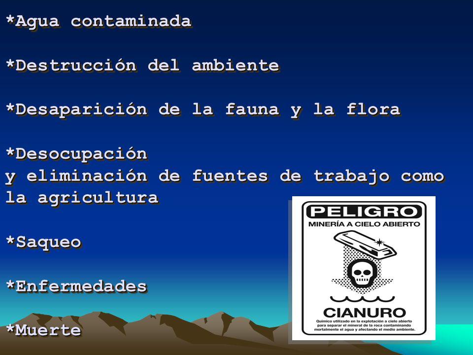 Esto es posible en Argentina debido a un paquete de leyes conocido como de inversiones mineras sancionado durante la década de los 90, que permiten que empresas multinacionales extranjeras se lleven nuestro mineral sin pagar impuestos.