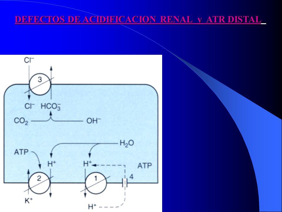DEFECTOS DE ACIDIFICACION RENAL y ATR DISTAL