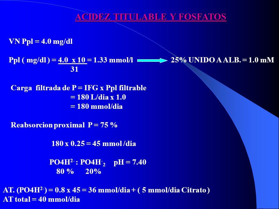 VN Ppl = 4.0 mg/dl Ppl ( mg/dl ) = 4.0 x 10 = 1.33 mmol/l 25% UNIDO A ALB. = 1.0 mM 31 Carga filtrada de P = IFG x Ppl filtrable = 180 L/dia x 1.0 = 1
