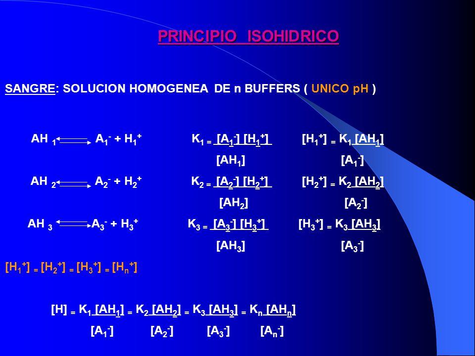 ACCION BUFFER EN ALTERACIONES RESPIRATORIAS ACIDOSIS RESPIRATORIA AGUDA: pCO2 pHCO3H - CO2 + H2O CO3H2 CO3H - + H + BUFFER - BUFFERH c/10 mmHg pCO2 1 mEq/L CO3H - + ALCALOSIS RESPIRATORIA AGUDA c/10 mmHg pCO2 2.5 mEq/L CO3H - pCO2pH CO3H -