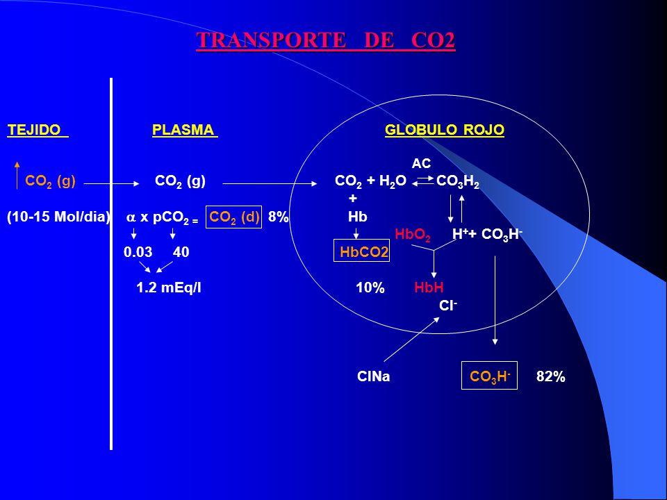 TEJIDO PLASMA GLOBULO ROJO AC CO 2 (g) CO 2 (g) CO 2 + H 2 O CO 3 H 2 + (10-15 Mol/dia) x pCO 2 = CO 2 (d) 8% Hb HbO 2 H + + CO 3 H - 0.03 40 HbCO2 1.