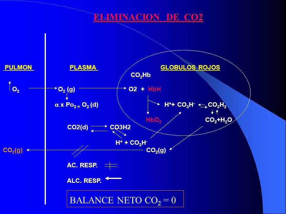 PULMON PLASMA GLOBULOS ROJOS CO 2 Hb O 2 O 2 (g) O2 + HbH x Po 2 = O 2 (d) H + + CO 3 H - CO 3 H 2 HbO 2 CO 2 +H 2 O CO2(d) CO3H2 H + + CO 3 H - CO 2
