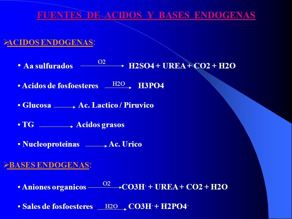 FUENTES DE ACIDOS Y BASES ENDOGENAS ACIDOS ENDOGENAS : Aa sulfurados H2SO4 + UREA + CO2 + H2O Acidos de fosfoesteres H3PO4 Glucosa Ac. Lactico / Piruv