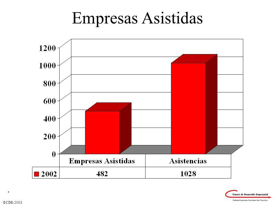 ©CDE-2003 Empresas Asistidas.