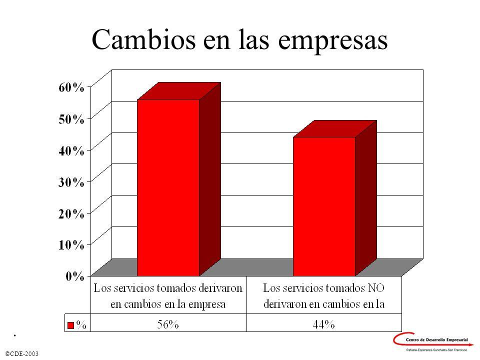 ©CDE-2003 Cambios en las empresas.