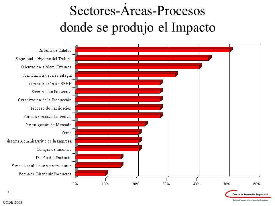 ©CDE-2003 Sectores-Áreas-Procesos donde se produjo el Impacto.