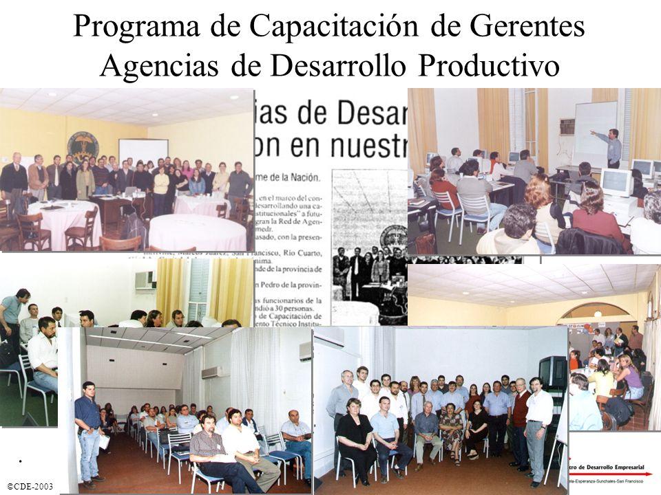 ©CDE-2003 Programa de Capacitación de Gerentes Agencias de Desarrollo Productivo.