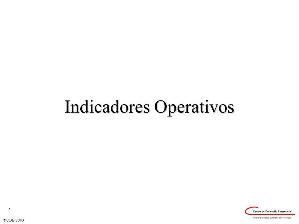 ©CDE-2003 Indicadores Operativos.