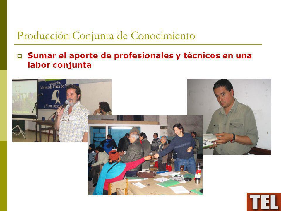 Producción Conjunta de Conocimiento Sumar el aporte de profesionales y técnicos en una labor conjunta