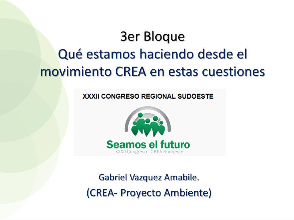 3er Bloque Qué estamos haciendo desde el movimiento CREA en estas cuestiones Gabriel Vazquez Amabile. (CREA- Proyecto Ambiente)