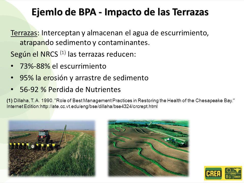 Ejemlo de BPA - Impacto de las Terrazas Terrazas: Interceptan y almacenan el agua de escurrimiento, atrapando sedimento y contaminantes. Según el NRCS