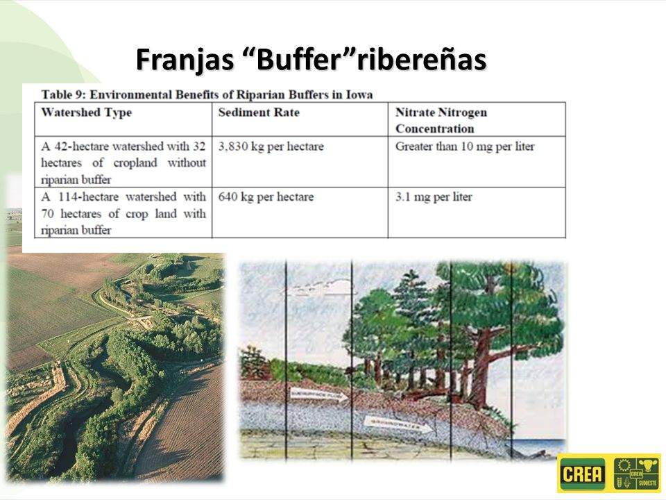 Franjas Bufferribereñas