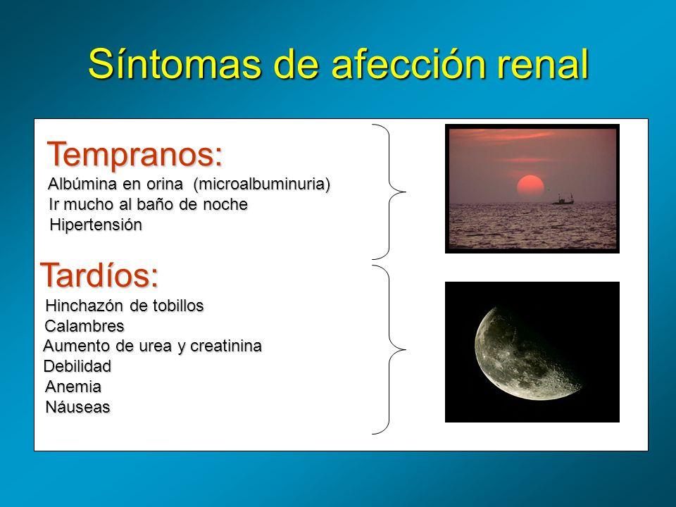Síntomas de afección renal Tempranos: Albúmina en orina (microalbuminuria) Albúmina en orina (microalbuminuria) Ir mucho al baño de noche Hipertensión