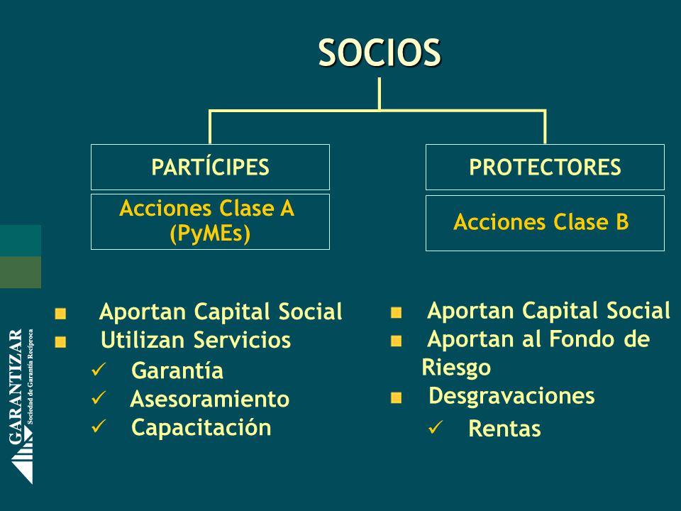 PARTÍCIPES Garantía Asesoramiento Capacitación Aportan Capital Social Utilizan Servicios Acciones Clase A (PyMEs) Rentas Aportan Capital Social Aportan al Fondo de Riesgo Desgravaciones SOCIOS Acciones Clase B PROTECTORES