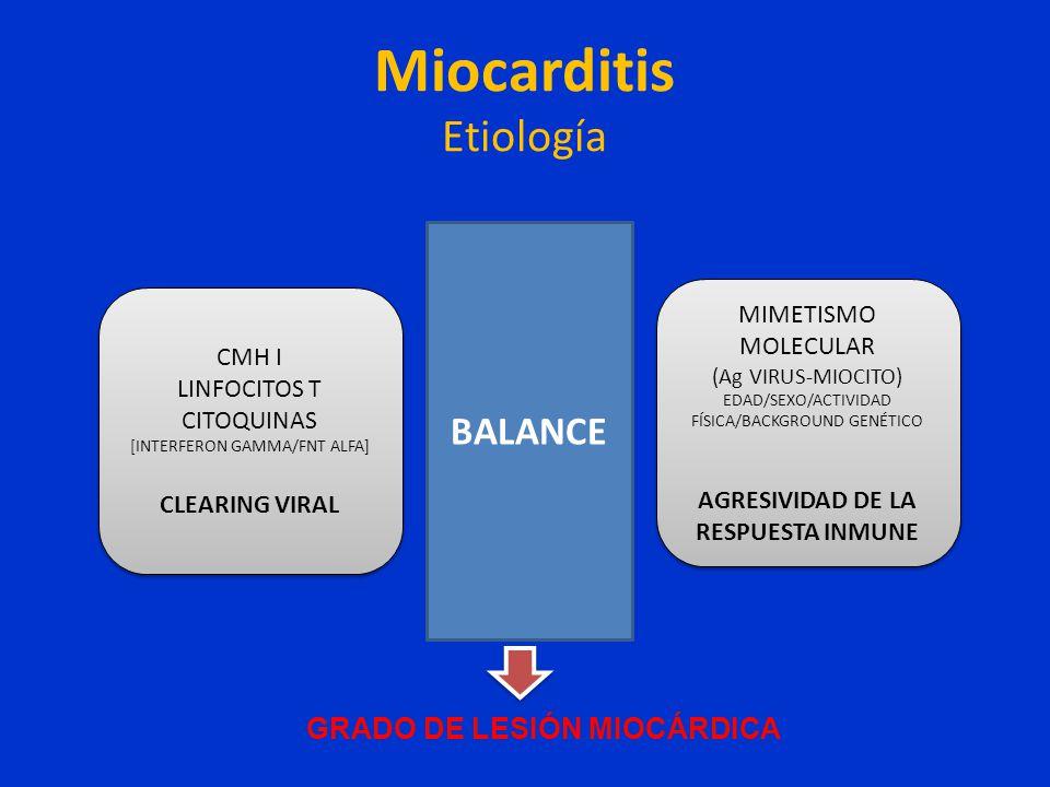 Miocarditis Etiología CMH I LINFOCITOS T CITOQUINAS [INTERFERON GAMMA/FNT ALFA] CLEARING VIRAL CMH I LINFOCITOS T CITOQUINAS [INTERFERON GAMMA/FNT ALF