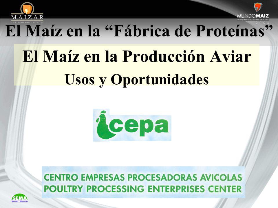 El Maíz en la Fábrica de Proteínas El Maíz en la Producción Aviar Usos y Oportunidades