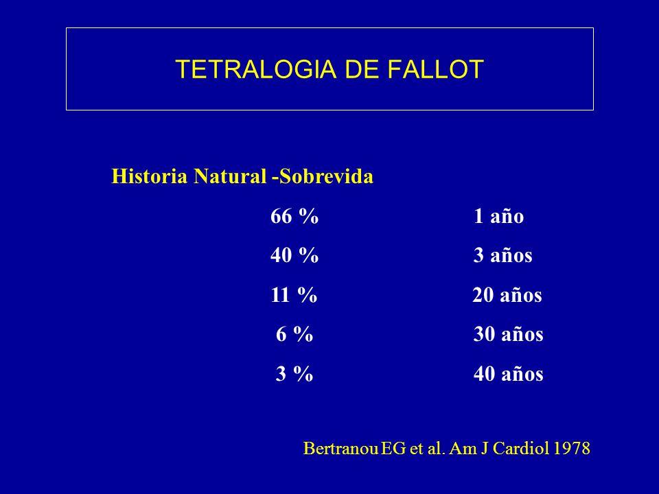 TETRALOGIA DE FALLOT Historia Natural -Sobrevida 66 % 1 año 40 % 3 años 11 % 20 años 6 % 30 años 3 % 40 años Bertranou EG et al. Am J Cardiol 1978