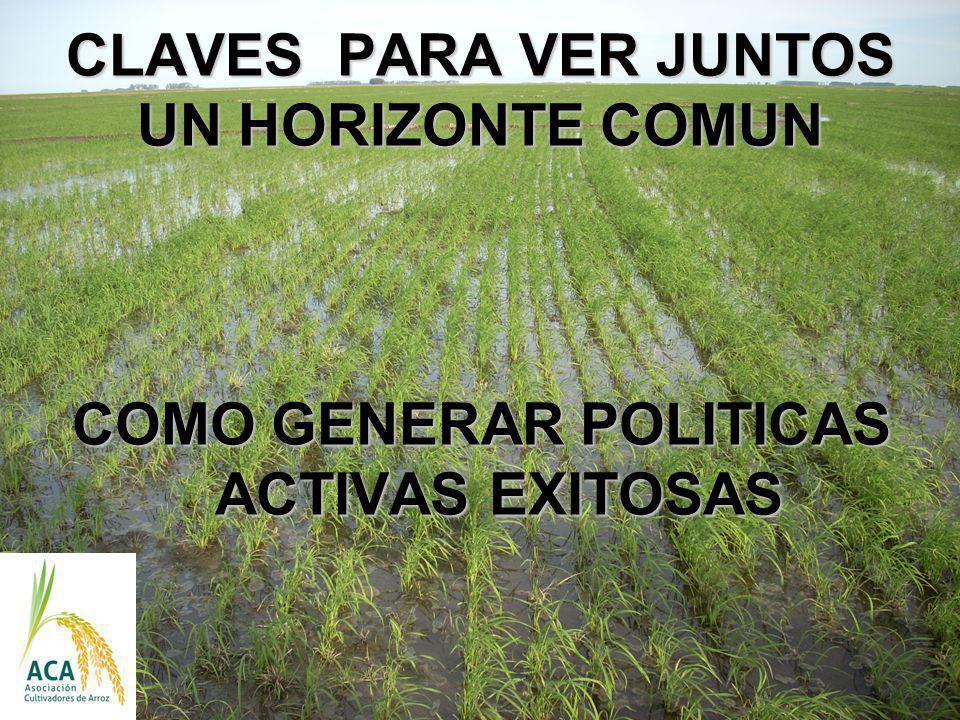 CLAVES PARA VER JUNTOS UN HORIZONTE COMUN COMO GENERAR POLITICAS ACTIVAS EXITOSAS