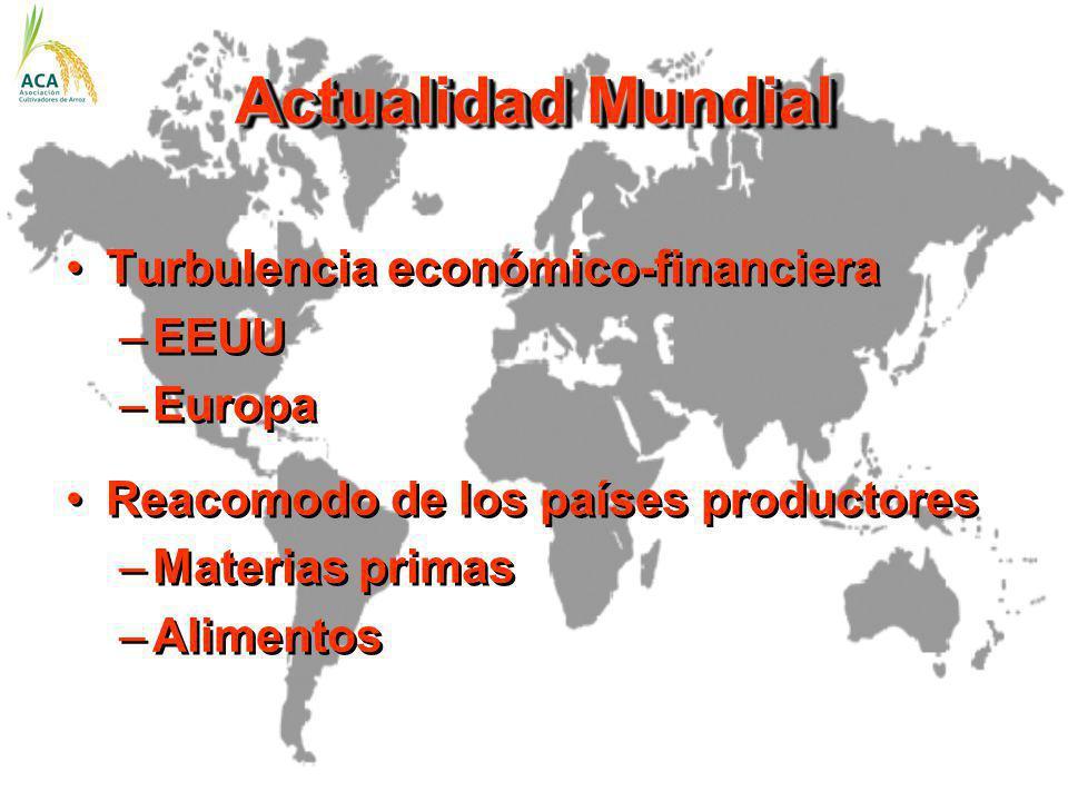 Actualidad Mundial Turbulencia económico-financiera –EEUU –Europa Reacomodo de los países productores –Materias primas –Alimentos Turbulencia económic
