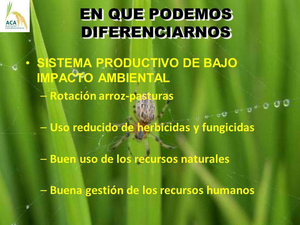 EN QUE PODEMOS DIFERENCIARNOS SISTEMA PRODUCTIVO DE BAJO IMPACTO AMBIENTAL –Rotación arroz-pasturas –Uso reducido de herbicidas y fungicidas –Buen uso