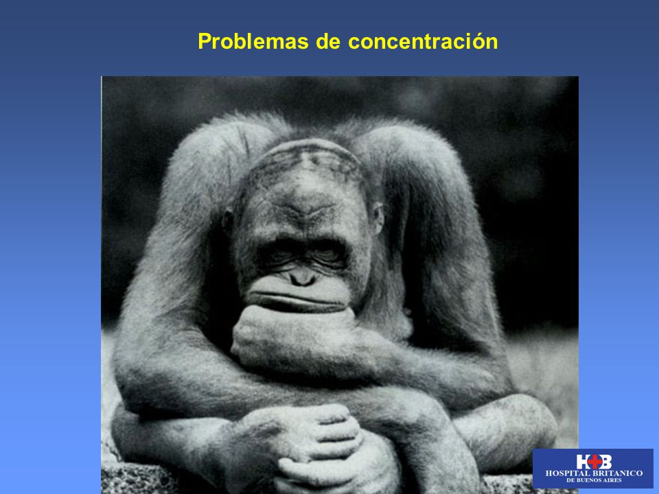 Problemas de concentración What ??