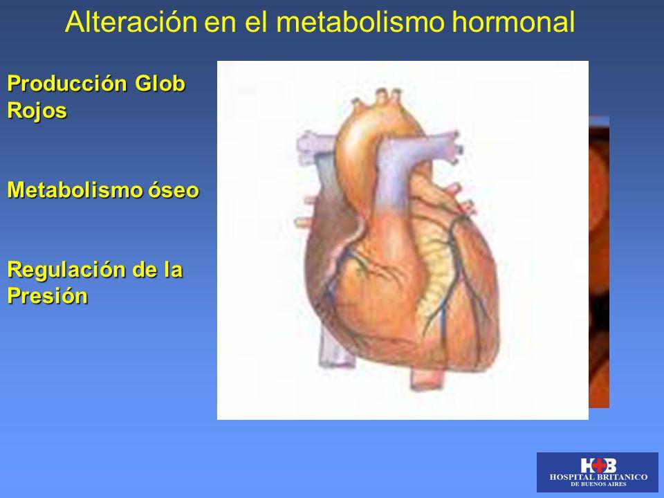 Alteración en el metabolismo hormonal Producción Glob Rojos Metabolismo óseo Regulación de la Presión