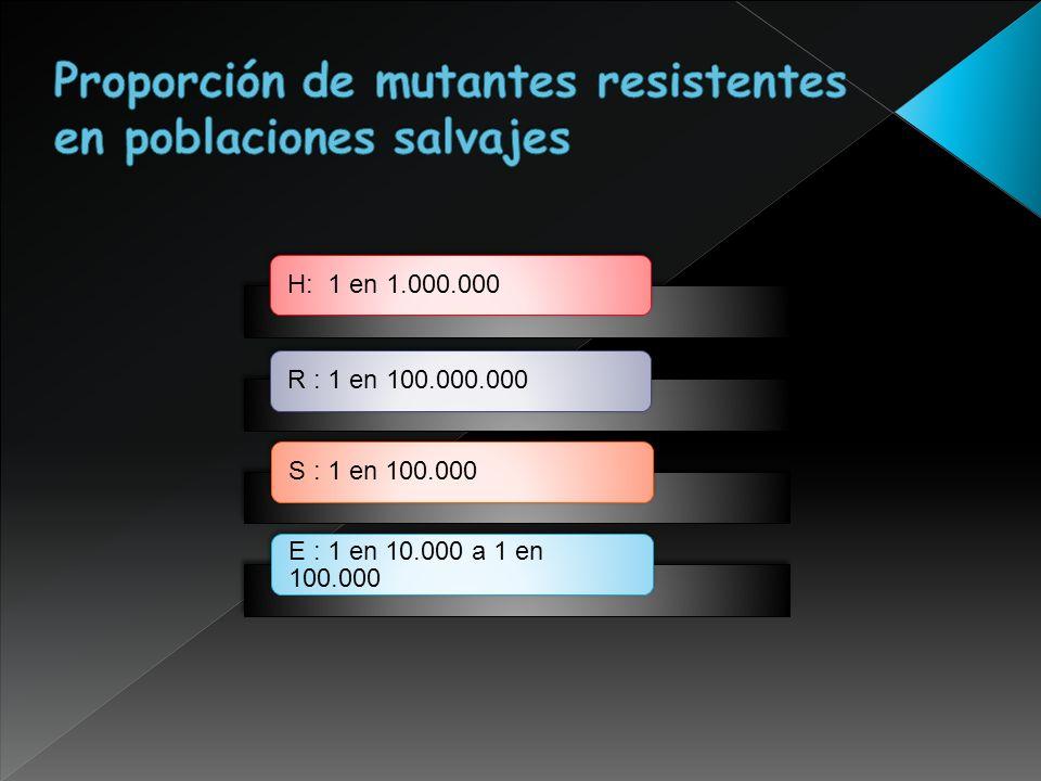 H: 1 en 1.000.000R : 1 en 100.000.000S : 1 en 100.000 E : 1 en 10.000 a 1 en 100.000