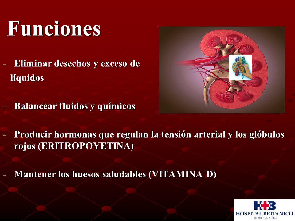 Funciones Funciones -Eliminar desechos y exceso de líquidos líquidos -Balancear fluidos y químicos -Producir hormonas que regulan la tensión arterial y los glóbulos rojos (ERITROPOYETINA) -Mantener los huesos saludables (VITAMINA D)