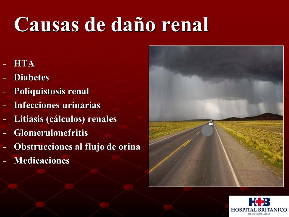 Causas de daño renal Causas de daño renal -HTA -Diabetes -Poliquistosis renal -Infecciones urinarias -Litiasis (cálculos) renales -Glomerulonefritis -Obstrucciones al flujo de orina -Medicaciones