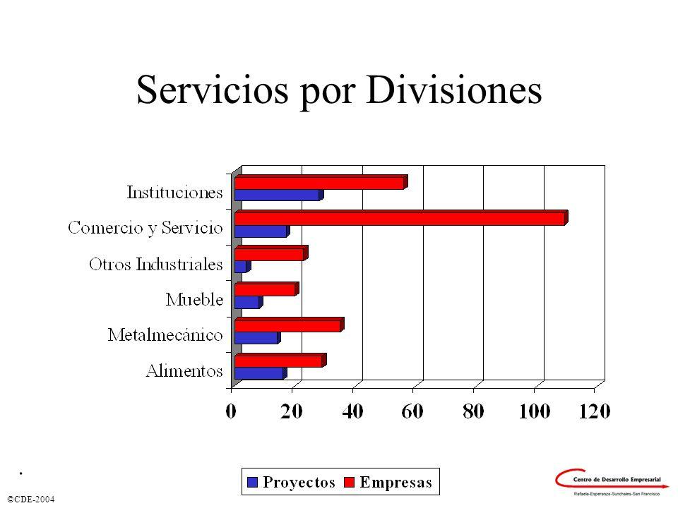 ©CDE-2004 Servicios por Divisiones.