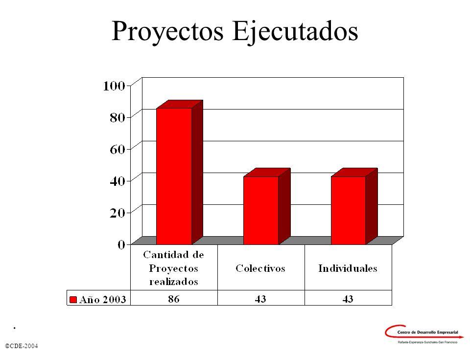 ©CDE-2004 Proyectos Ejecutados.