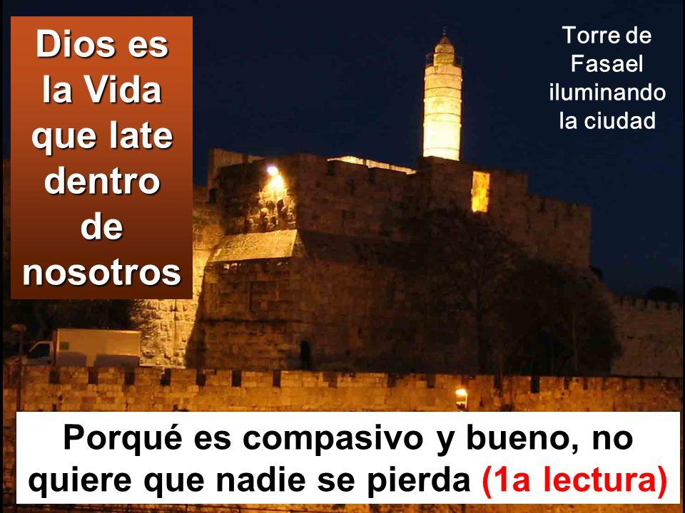 Porqué es compasivo y bueno, no quiere que nadie se pierda (1a lectura) Dios es la Vida que late dentro de nosotros Torre de Fasael iluminando la ciudad
