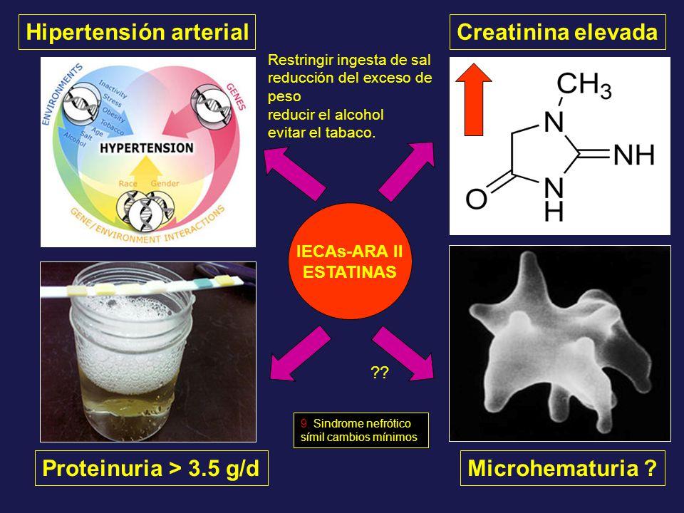 Hipertensión arterial Proteinuria > 3.5 g/dMicrohematuria ? Creatinina elevada IECAs-ARA II ESTATINAS ?? Restringir ingesta de sal reducción del exces