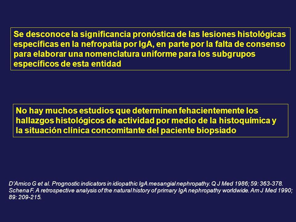 Se desconoce la significancia pronóstica de las lesiones histológicas específicas en la nefropatía por IgA, en parte por la falta de consenso para ela