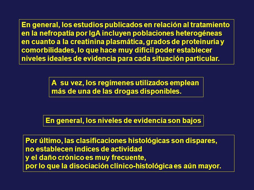 En general, los estudios publicados en relación al tratamiento en la nefropatía por IgA incluyen poblaciones heterogéneas en cuanto a la creatinina pl