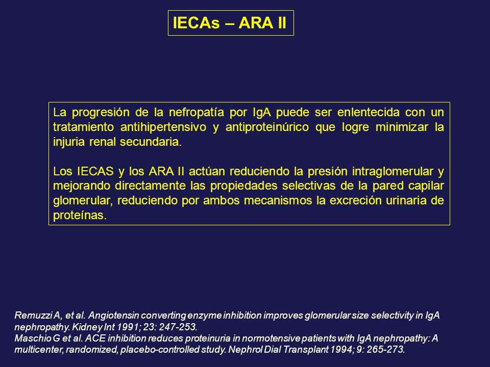 La progresión de la nefropatía por IgA puede ser enlentecida con un tratamiento antihipertensivo y antiproteinúrico que logre minimizar la injuria ren