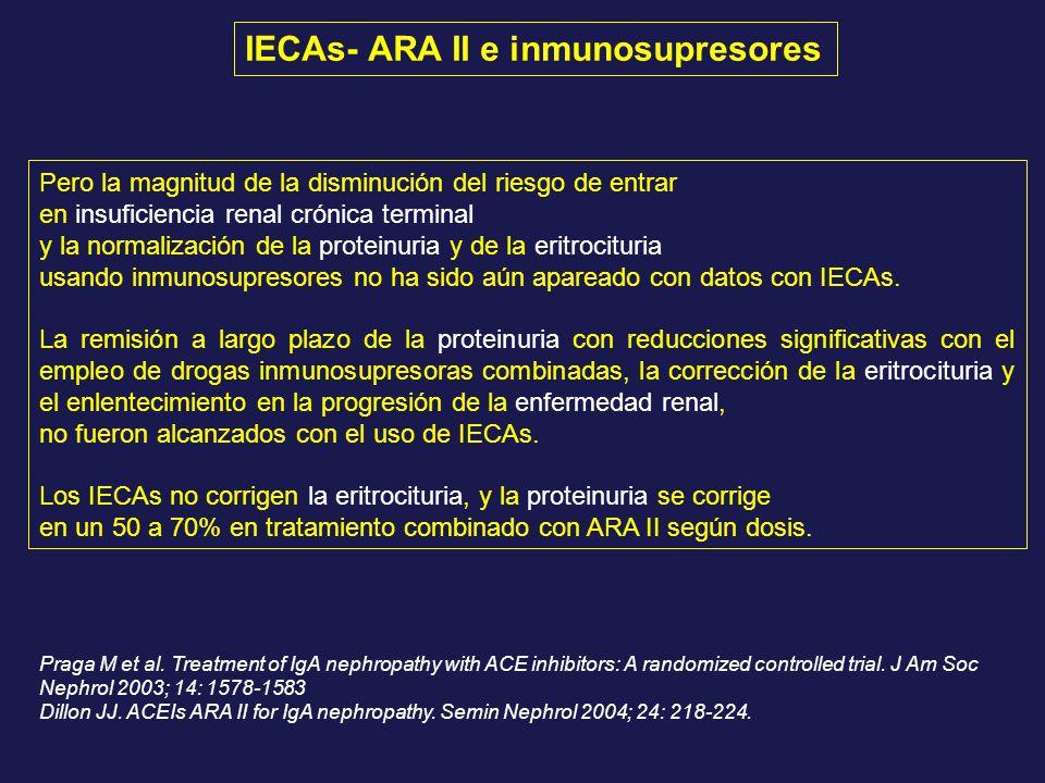 Pero la magnitud de la disminución del riesgo de entrar en insuficiencia renal crónica terminal y la normalización de la proteinuria y de la eritrocit