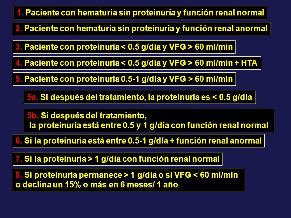 1. Paciente con hematuria sin proteinuria y función renal normal 2. Paciente con hematuria sin proteinuria y función renal anormal 3. Paciente con pro