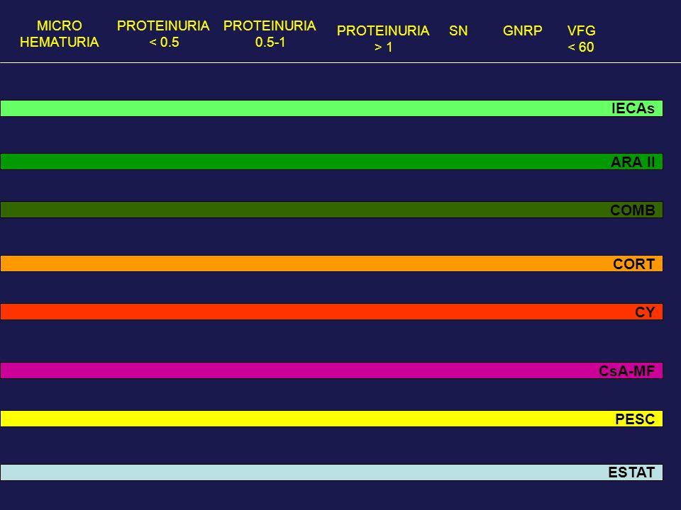 MICRO HEMATURIA PROTEINURIA < 0.5 PROTEINURIA 0.5-1 PROTEINURIA > 1 GNRPVFG < 60 SN IECAs ARA II COMB CORT CsA-MF CY PESC ESTAT
