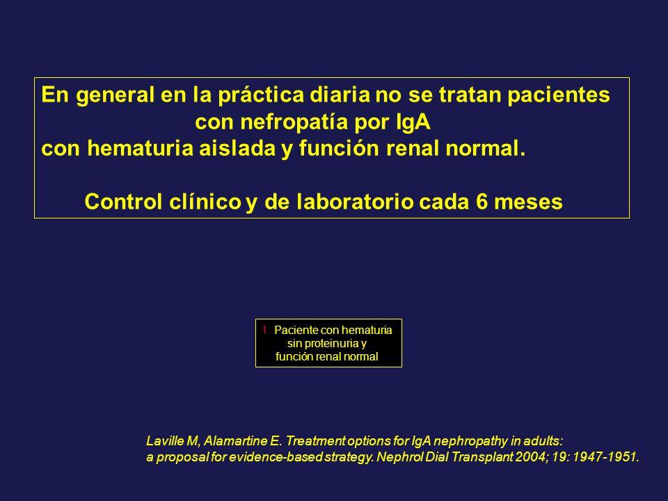 En general en la práctica diaria no se tratan pacientes con nefropatía por IgA con hematuria aislada y función renal normal. Control clínico y de labo